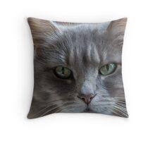Portrait of Oshi Throw Pillow