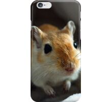 Gerbil 12 iPhone Case/Skin