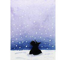 Scottie Dog 'Snowing' Photographic Print