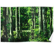 Cypress Gardens At Night Poster