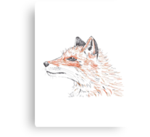 Orange Fox Canvas Print