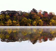 Fall and Fog on Springfield Lake by Mark A. Queen