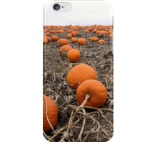 Pumpkin Patch... but where's the great pumpkin? iPhone Case/Skin