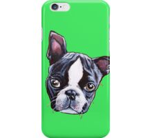 Ziggy - Boston Terrier Puppy iPhone Case/Skin