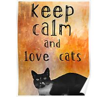 Kepp calm and love cats Poster