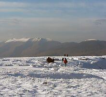 Mangerton in winter by John Quinn