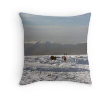 Mangerton in winter Throw Pillow