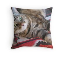 Cinnamon the Cat Throw Pillow