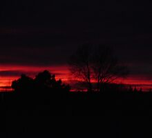 Fire Sky by jtodaworld