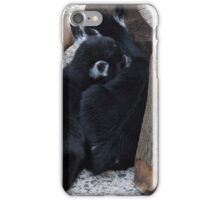 SLEEPING BABY GOATS iPhone Case/Skin