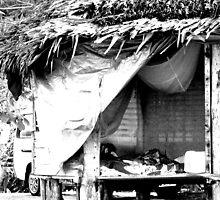 Fale In Samoa by Kate Harrison