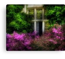 A window Canvas Print