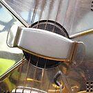Hawaiian Steel by WildestArt