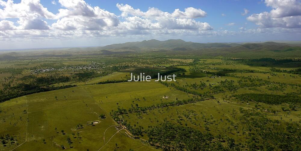 Biggenden Township by Julie Just
