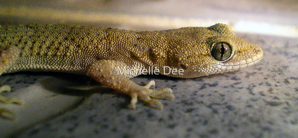 Lizard by michelleduerden