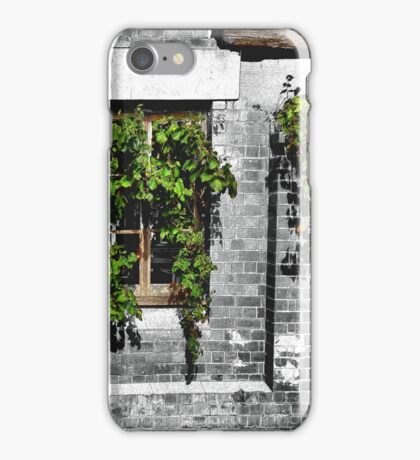 Window Ivy iPhone Case/Skin