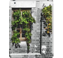 Window Ivy iPad Case/Skin