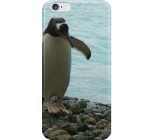 PENGUIN BUDDIES iPhone Case/Skin