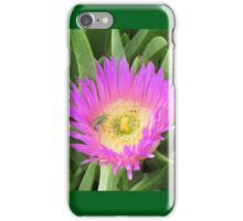 Pigface Flower Pollination iPhone Case/Skin