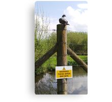 Beware of the Pigeon! Canvas Print