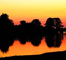 Reflection's of Dusk  by Ella Hall