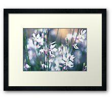 Pretty white flowers, vintage, pastel Framed Print
