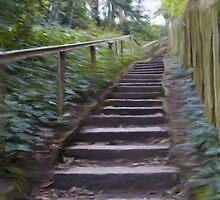 Park Steps by Glen Allen