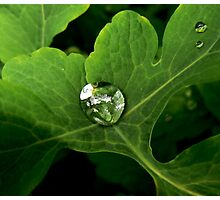 large water drop Photographic Print