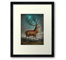 King of the Night Framed Print