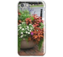 Colorful Planters iPhone Case/Skin