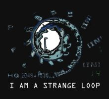I AM A STRANGE LOOP by Carlos D. Toledo-Suárez