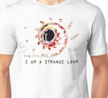 I AM A STRANGE LOOP Unisex T-Shirt