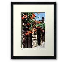 Flowers stretching out over the gates of an old house in Nessebar, Bulgaria Framed Print