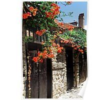 Flowers stretching out over the gates of an old house in Nessebar, Bulgaria Poster