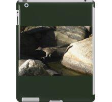 Leaping Roadrunner iPad Case/Skin