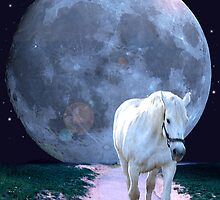 Moon Horse by Nori Bucci
