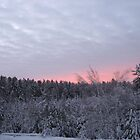 Cloudy Winter Sunset by Brad & Melanie LaFrenier