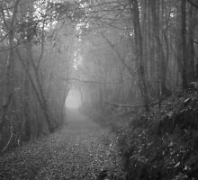 Old Road by Leah77