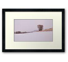 Livermore #3 Framed Print