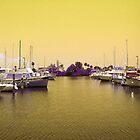 Yellow Sky Marina by Sheila McCrea