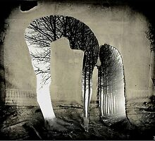 outside she folds inside she grows by Loui  Jover