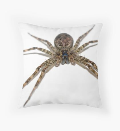 Tub Spider Throw Pillow