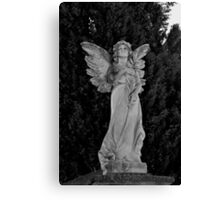 Don't Blink Canvas Print