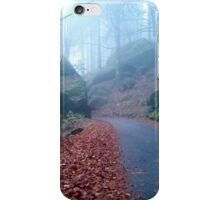 Mountain road in the wood on November iPhone Case/Skin