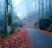 Mountain road in the wood on November by madigitalart