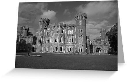 Johnstown castle  by John Quinn
