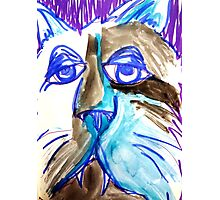 Abstract Blues Cat Photographic Print
