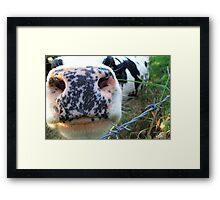 Or Give Me A Kiss  No 3. Framed Print