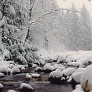 Winter Wonderland - At the Creek by Tamara Brandy