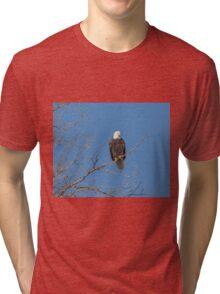 American Bald Eagle 2015-8 Tri-blend T-Shirt